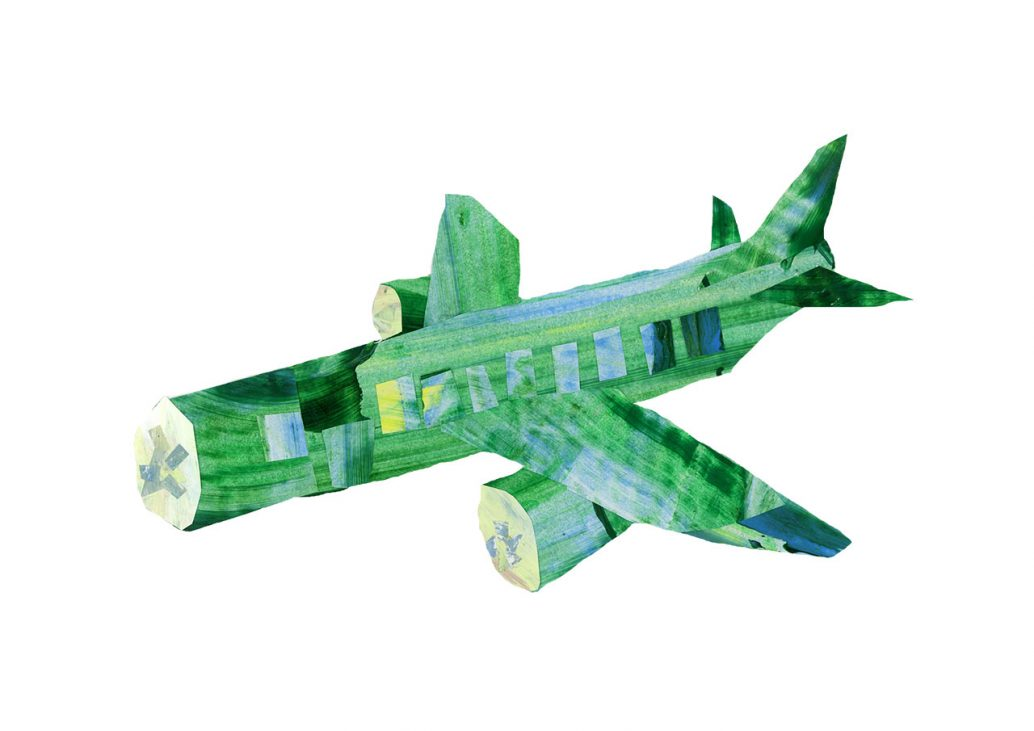 Cucumber Plane